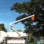 Cesta Aérea Glorinha RS 150x150 - Como a Prefeitura de Glorinha/RS aumentou a produtividade na poda de árvores