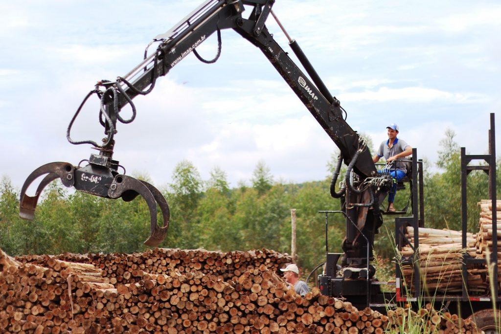 Guindaste Florestal 1024x683 - Força e eficiência na movimentação de madeiras