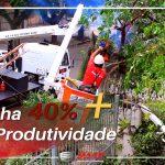 tenha mais produtividade 150x150 - [Case de Sucesso] Manutenção e arborização